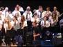 Elvis Tribute in National Concert Hall